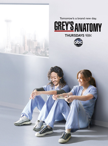 Анатомия страсти (Анатомия Грей) / Grey's Anatomy (10 сезон / 2013) WEB-DLRip