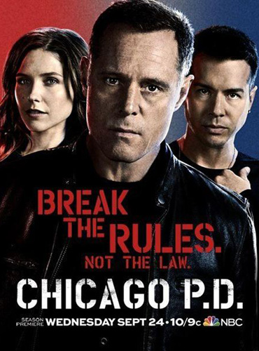 Полиция Чикаго / Chicago PD (2 сезон / 2014) WEB-DLRip