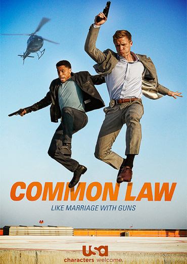 Общее дело / Common Law (1 сезон / 2012) WEB-DLRip