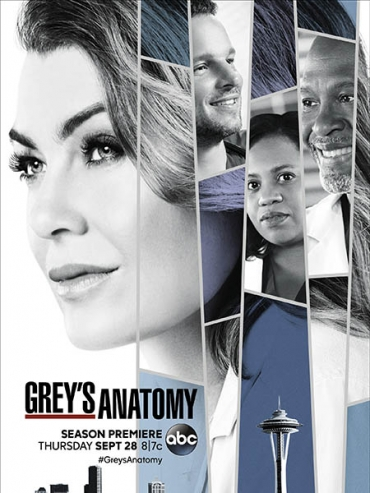 Анатомия Грей / Анатомия страсти (14 сезон) / Greys Anatomy (2017) WEB-DLRip