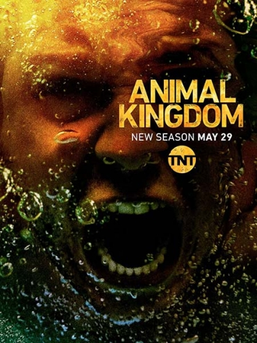 По волчьим законам (3 сезон) / Animal Kingdom (2018) WEB-DLRip / WEB-DL 720 / WEBRip